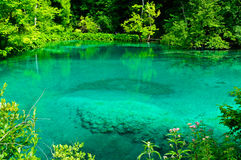Tranquil turquoise lake Royalty Free Stock Images