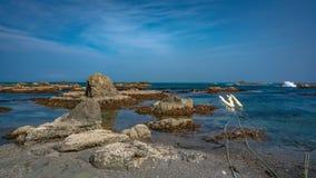 Turquoise Stone Beach Sea View stock image