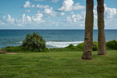 Tranquil view of a green lawn, agave, palms, Mediterranean sea Stock Photography