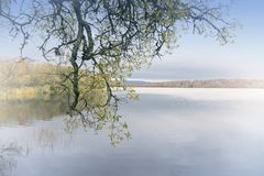 A tranquil view over the loch stock images