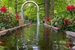 Tranquil water feature in a lush Beautiful green woodland garden with dense foliage.  royalty free stock photography