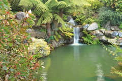Tranquil waterfall in lush environment Mt Tomah Australia Stock Image