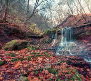 Tranquil waterfall scenery in middle of autumn forest. Stock Photography