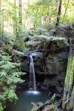Semperveren Falls at Big Basin Redwoods Park Royalty Free Stock Image