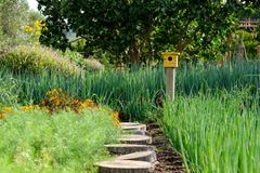 Tranquil, well stocked garden with a variety of plants, and yellow bird house at the end of the path. Tranquil, well stocked garden, with yellow bird house at royalty free stock photos