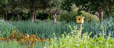 Tranquil, well stocked garden with a variety of plants, and yellow bird house at the end of the path. Tranquil, well stocked garden, with yellow bird house at royalty free stock images
