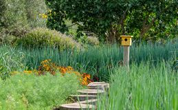 Tranquil, well stocked garden with a variety of plants, and yellow bird house at the end of the path. Tranquil, well stocked garden, with yellow bird house at stock image