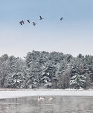 Tranquil winter landscape Royalty Free Stock Photo