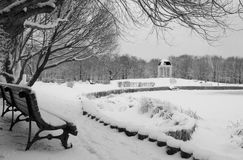 Tranquil winter morning in the park in black-and-white. Beautiful winter park view with the pond and bench in monochrome Royalty Free Stock Image