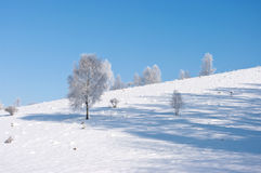 Tranquil winter scene Stock Photos