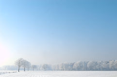 Tranquil winter scene. Winterlandscape with snow and blue sky and plenty of copyspace Stock Photography