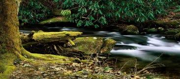 Tranquilidad de la corriente de la montaña fotografía de archivo libre de regalías