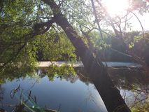 tranquilidad del río del satilla imagen de archivo