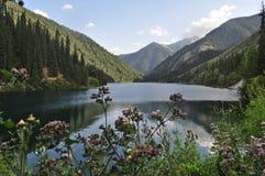 Tranquilidad perfecta en naturaleza Fotografía de archivo libre de regalías