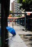 Tranquilidade após a tempestade fotos de stock