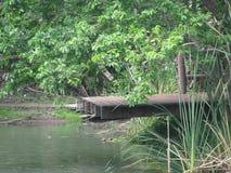 Tranquilidade da represa da pesca foto de stock royalty free