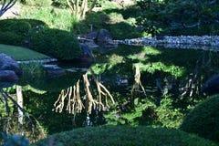 A tranquilidade e a paz do jardim japonês Imagem de Stock Royalty Free