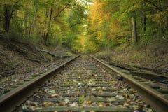 Tranquilité dans le paysage d'automne photo libre de droits