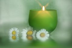 Glowing candle with daisies. In soft lighting Royalty Free Stock Photo