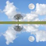 tranquility Arkivbild
