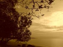 tranquility lizenzfreies stockbild