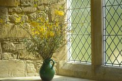 Tranquility. A display of yellow flowers in a green jug in the parish church at Thenford, Northamptonshire Royalty Free Stock Photos