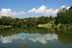 Tranquility lake. Rich vegetation and clouds reflected in a lake Stock Photo