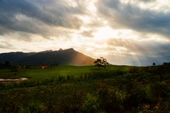 Mystic mountain with tree and sunbeam stock image