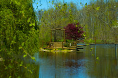 Tranquility On The Pond. Photo taken: April 26, 2015 Royalty Free Stock Photo