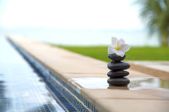 Tranquility scene of peaceful life Stock Photos