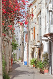 Tranqulity in Chania Royalty Free Stock Photo