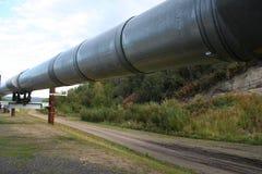 trans аляскского трубопровода Аляски Стоковая Фотография