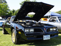 Trans Am Stock Images