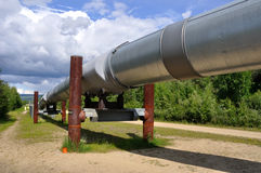 Trans Alaska Oil Pipeline Royalty Free Stock Images