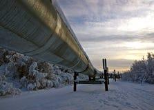 Trans-Alaska oliepijpleiding Stock Fotografie
