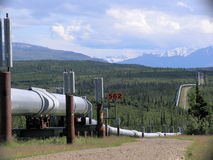 Trans-Alaska Pipeline Royalty Free Stock Images