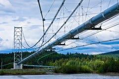 Trans-Alaska Pipeline Royalty Free Stock Images