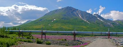 Trans Alaska Pipeline in the Alaska Range Stock Photography