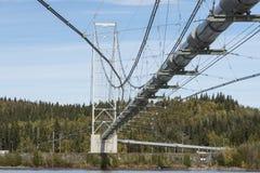 Trans-Alaska pipeline Royalty Free Stock Photography