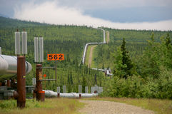 Trans Alaska Pipeline Passing Through the Boreal Forest Royalty Free Stock Photos