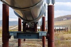 Trans Alaska Pipeline with Permafrost Stabilizing Heat Exchangers stock photo