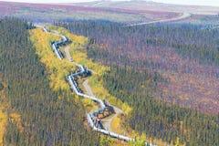 Trans.-Alaska rörledning längs den Dalton huvudvägen till den Pudhoe fjärden i Alaska Royaltyfri Bild