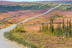 Trans.-Alaska rörledning längs den Dalton huvudvägen till den Pudhoe fjärden i Alaska Royaltyfri Fotografi
