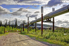 Trans Alaska rurociąg naftowy zdjęcia royalty free