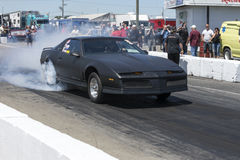 Trans am burnout Stock Image