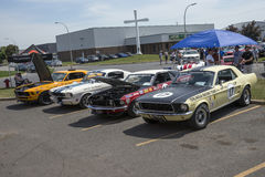 Trans am race cars. Picture of vintage trans am race cars in display during pique-niqueen voiture pour l'espoir 2016 Royalty Free Stock Photo