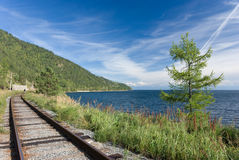 Trans Siberische spoorweg royalty-vrije stock fotografie