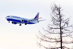 Transaero Boeing 737 stock fotografie