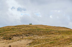 Transalpina road with hills covered with green grass Royalty Free Stock Image