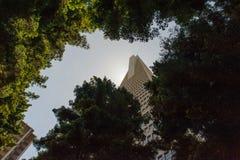 Transamerica Стоковая Фотография RF